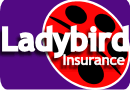 Ladybird car insurance logo